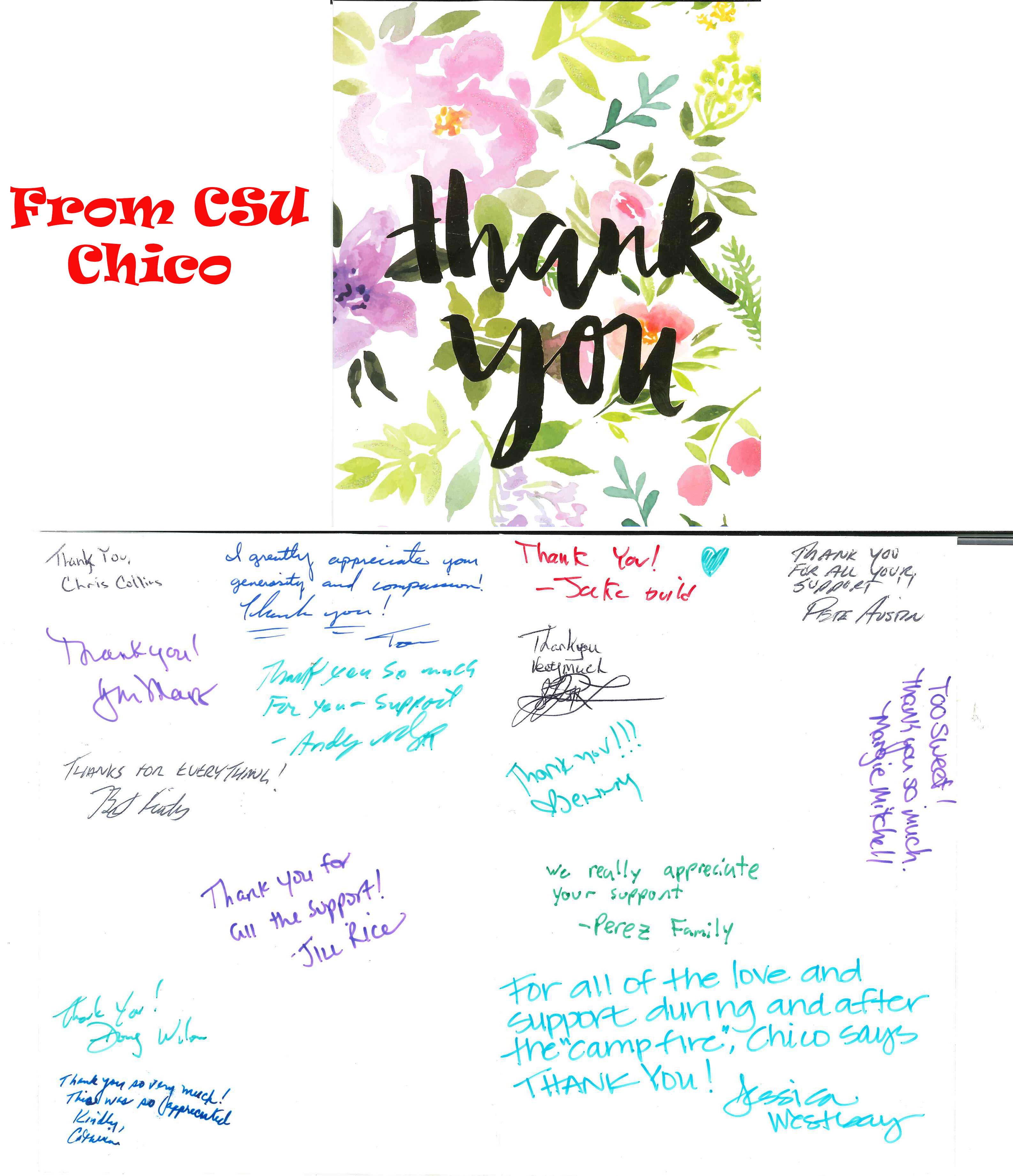 Thank you note from Chico