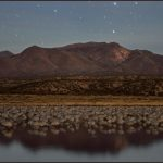 bosque_del_apache_at_night