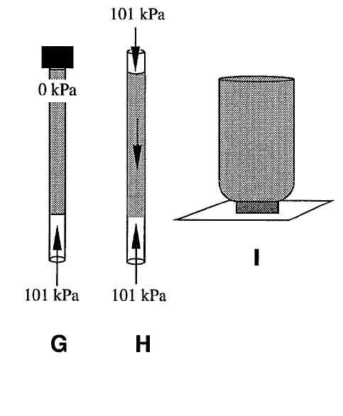 2 Liter Bottle Rocket Diagram: Instructor Demonstrations
