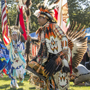 Celebrating Native American Life at Powwow