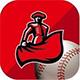 Matador logo with baseball