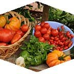 CSUN will offer tips on how to grow a vegetable garden on March 25.