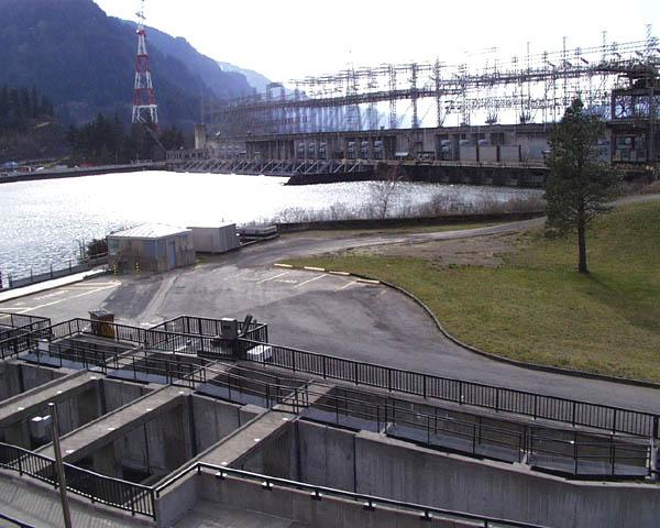 Bonneville dam for Bonneville dam fish camera