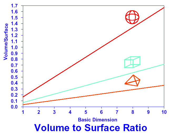 how to write surface area to volume ratio