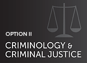 option II: criminology and social justice-silhouette of scales of justice